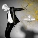 Jang Wooyoung (2PM) - 23, Male, Single (GOLD Edition)