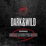 BTS (방탄소년단) - Dark & Wild