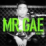 Gary (Lessang) - Mr. Gae (1st Mini Album)